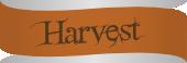 The Harvest I: Kill 30 distinct uniques over the course of the tournament.